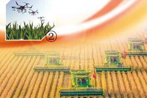 我国农业农村取得历史性成就、发生历史性变革