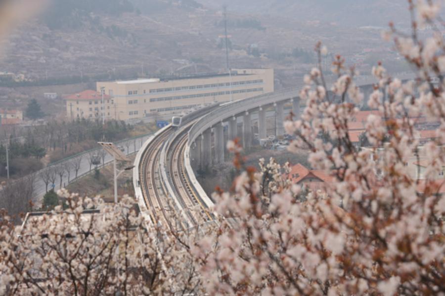 芳菲四月天-运营二中心-李仁昇.png