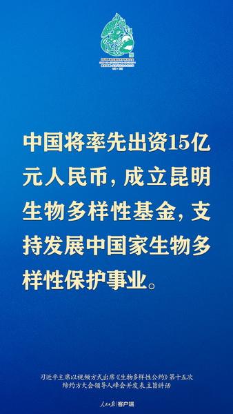 4_调整大小.jpg
