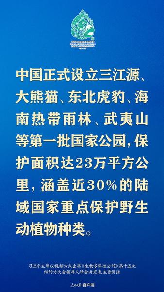 6_调整大小.jpg